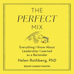 The Perfect Mix by Helen Rothberg audiobook