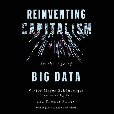 Reinventing Capitalism in the Age of Big Data by Viktor Mayer-Schönberger audiobook