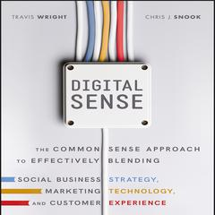 Digital Sense by Travis Wright audiobook