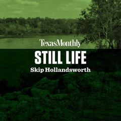 Still Life by Skip Hollandsworth audiobook