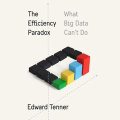 The Efficiency Paradox by Edward Tenner audiobook