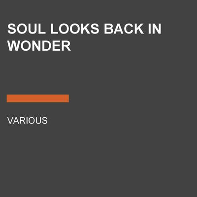 Soul Looks Back in Wonder by various authors audiobook