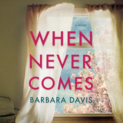 When Never Comes by Barbara Davis audiobook