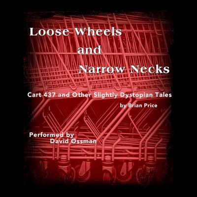 Loose Wheels and Narrow Necks by Brian Price audiobook
