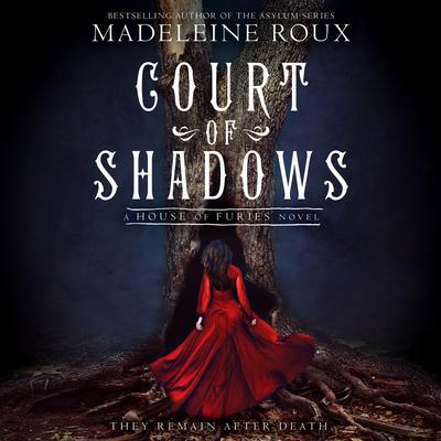 Court of Shadows by Madeleine Roux audiobook