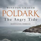 The Angry Tide by  Winston Groom audiobook