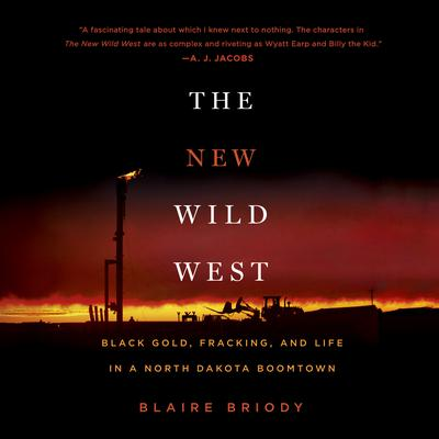 The New Wild West by Blaire Briody audiobook