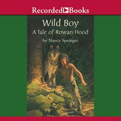 Wild Boy by Nancy Springer audiobook