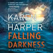 Falling Darkness by  Karen Harper audiobook