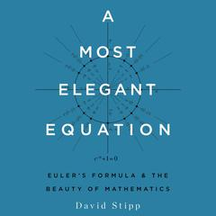A Most Elegant Equation by David Stipp audiobook