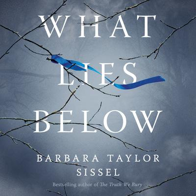 What Lies Below by Barbara Taylor Sissel audiobook
