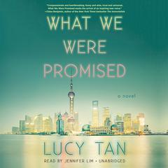 What We Were Promised by Lucy Tan audiobook