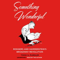 Something Wonderful by Todd S.  Purdum audiobook