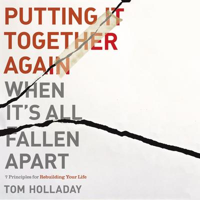 Putting It Together Again When It's All Fallen Apart by Tom Holladay audiobook