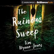 The Ruinous Sweep by  Tim Wynne-Jones audiobook