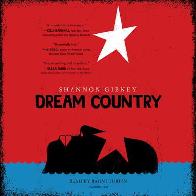 Dream Country by Shannon Gibney audiobook