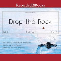 Drop the Rock: Removing Character Defects by Bill P. audiobook