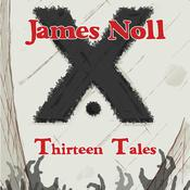 Thirteen Tales by  James Noll audiobook