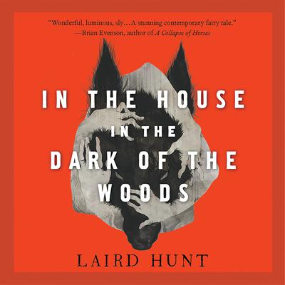 In the House in the Dark of the Woods by Laird Hunt audiobook