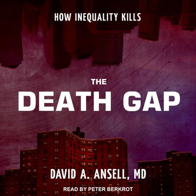 The Death Gap by David A. Ansell audiobook