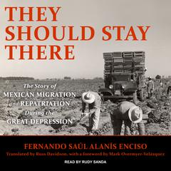They Should Stay There by Fernando Saul Alanis Enciso audiobook