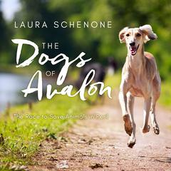The Dogs of Avalon by Laura Schenone audiobook