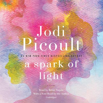 A Spark of Light by Jodi Picoult audiobook