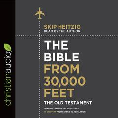 The Bible from 30,000 Feet: The Old Testament by Skip Heitzig audiobook