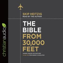 The Bible from 30,000 Feet by Skip Heitzig audiobook