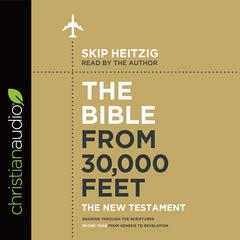 The Bible from 30,000 Feet: The New Testament by Skip Heitzig audiobook