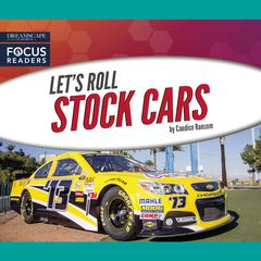 Stock Cars by Candice Ransom audiobook