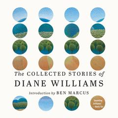 The Collected Stories of Diane Williams by Diane Williams audiobook