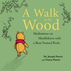 A Walk in the Wood by Joseph Parent audiobook