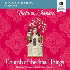 Church of the Small Things: Audio Bible Studies by Melanie Shankle audiobook
