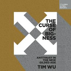 The Curse of Bigness by Tim Wu audiobook