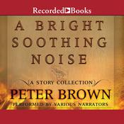 A Bright Soothing Noise by  Peter  Brown audiobook