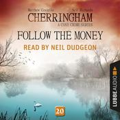 Follow the Money by  Neil Richards audiobook