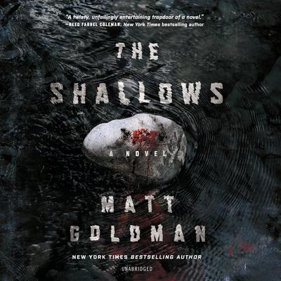 The Shallows by Matt Goldman audiobook