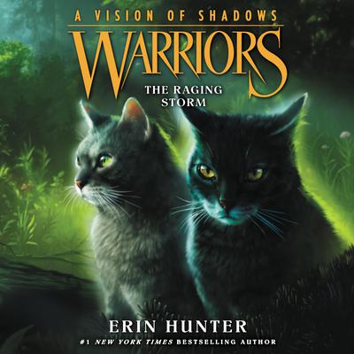Warriors: A Vision of Shadows #6: The Raging Storm by Erin Hunter audiobook