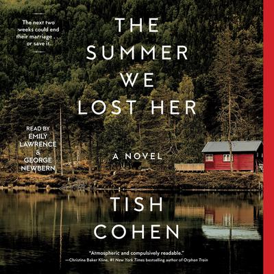 The Summer We Lost Her by Tish Cohen audiobook
