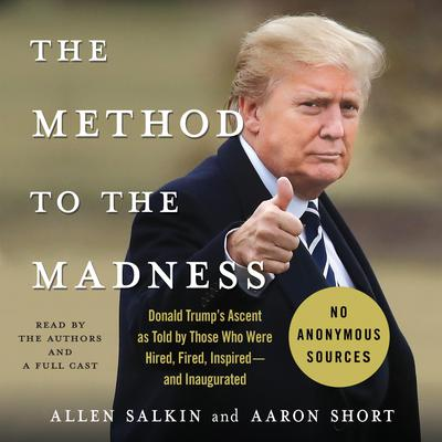 The Method to the Madness by Allen Salkin audiobook