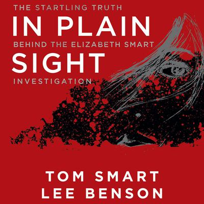 In Plain Sight by Tom Smart audiobook