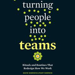 Turning People into Teams by David Sherwin audiobook