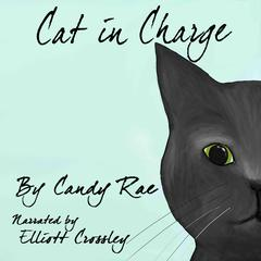 Cat in Charge by Candy Rae audiobook