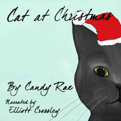 Cat at Christmas by Candy Rae audiobook