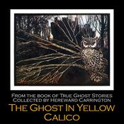 The Ghost in Yellow Calico by  Hereward Carrington audiobook