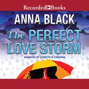 The Perfect Love Storm by  Anna Black audiobook