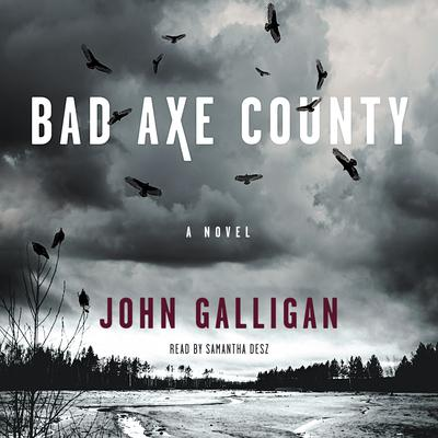 Bad Axe County by John Galligan audiobook