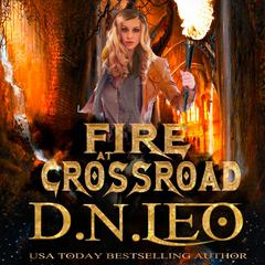 Fire at Crossroad by D.N. Leo audiobook