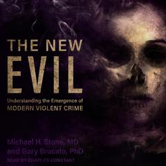 The New Evil by Michael H. Stone audiobook